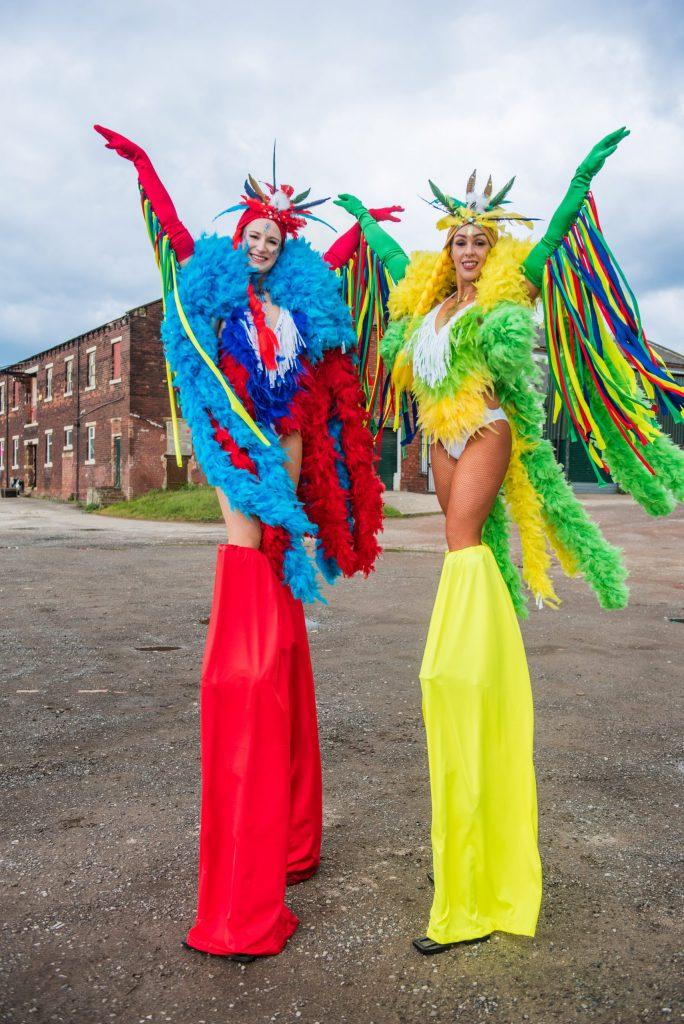 Tropical bird stilt walkers