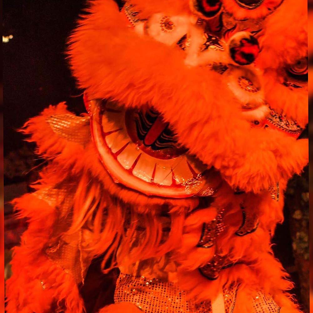 Oriental Chinese Lion Performers Acts for hire