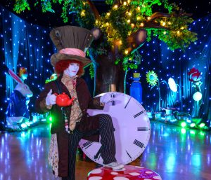 Alice In Wonderland Mad Hatter for hire
